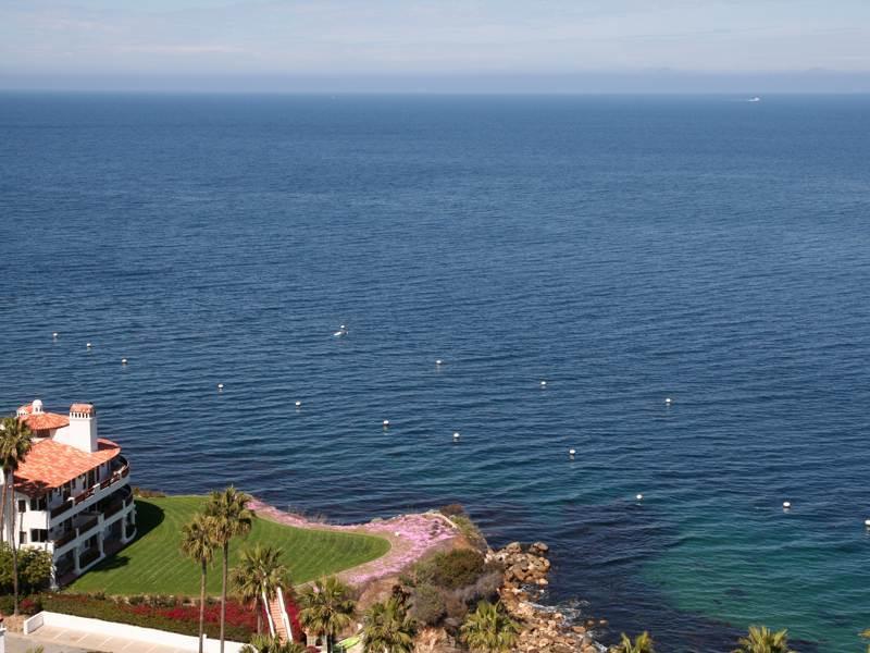Hamilton Cove Villa 1-78 - Image 1 - Catalina Island - rentals
