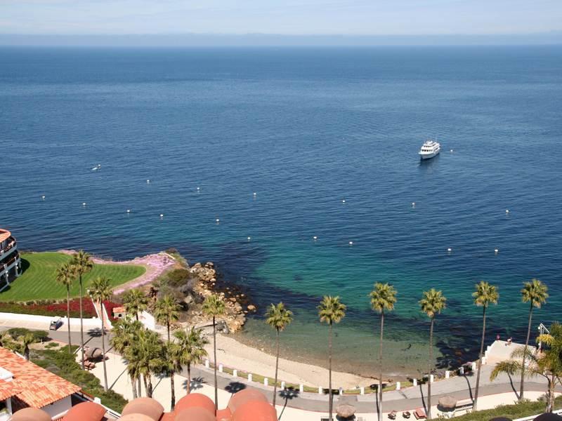 Hamilton Cove Villa 1-80 - Image 1 - Catalina Island - rentals