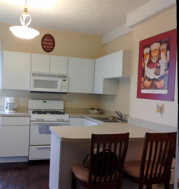 Studio Apt kitchen - Beautiful apt. across from Lighthouse Mall - Michigan City - rentals
