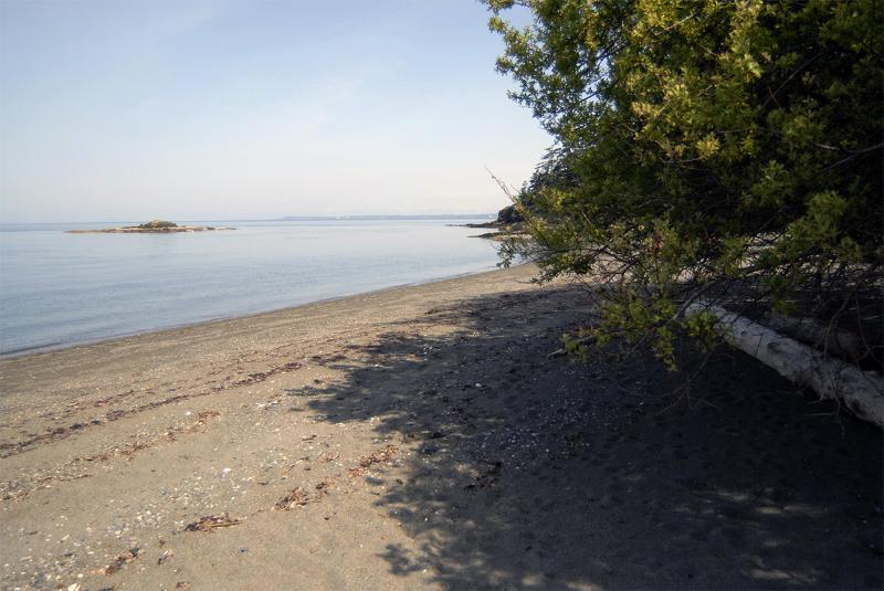 Walk the Beach & find Agates - Beach Walk - Lummi Island - rentals