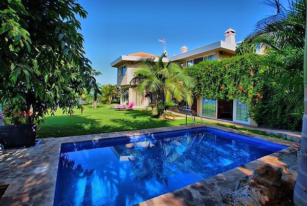 Oasis House - Image 1 - El Sauzal - rentals