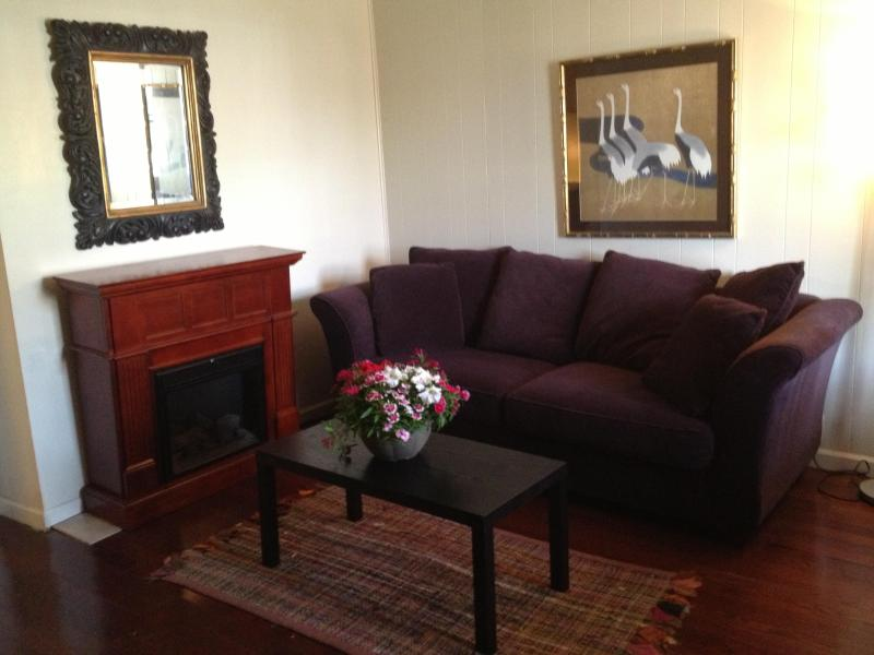 Cozy up in front of the electric fireplace - Uptown Cottage off beautiful St Charles Avenue - New Orleans - rentals