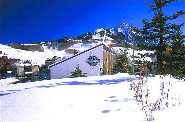 Conveniently Located in the Heart of Mt. Crested Butte - Wonderful Family Condo - Easy Access to Hiking & Biking Trails (1321) - Crested Butte - rentals