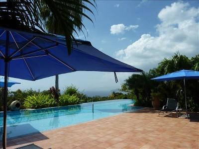Chez Wilson Villa - Image 1 - Nevis - rentals
