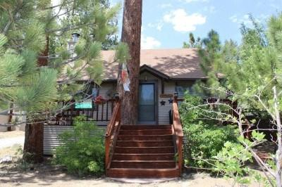 Adorable little cabin by the lake - Adorable 1 bedroom Cabin Perfect for a Romantic Getaway - Big Bear Lake - rentals