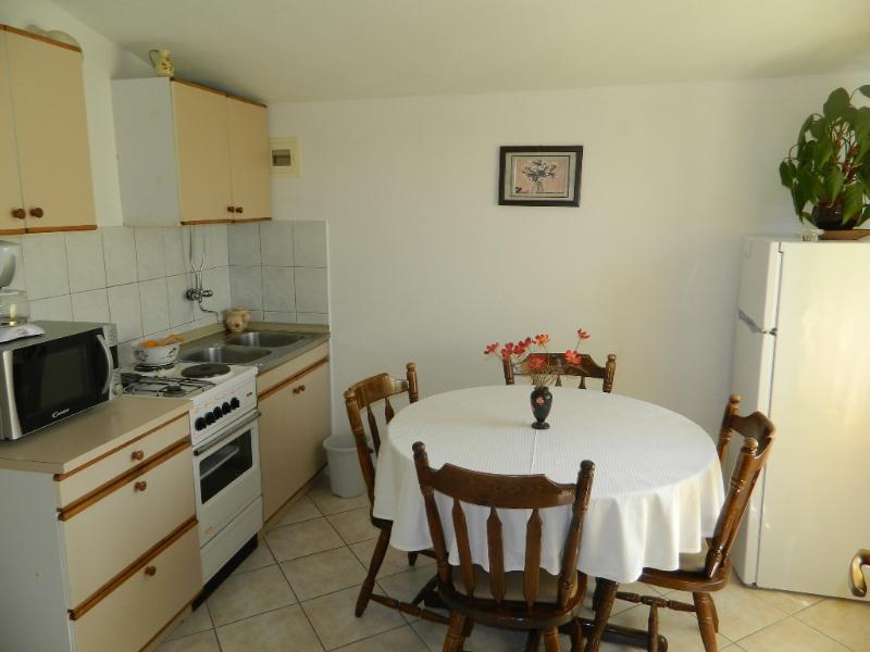 Apartment Mladen - 10161-A1 - Image 1 - Rogoznica - rentals