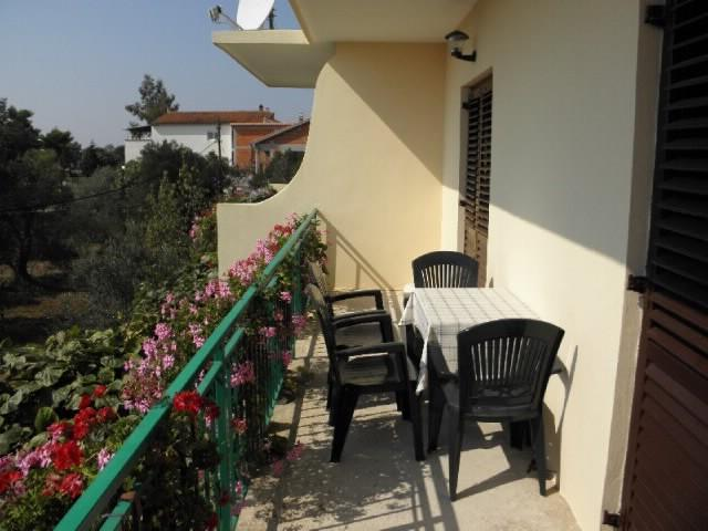 Apartments and Room Kasijan - 20631-A1 - Image 1 - Sukosan - rentals