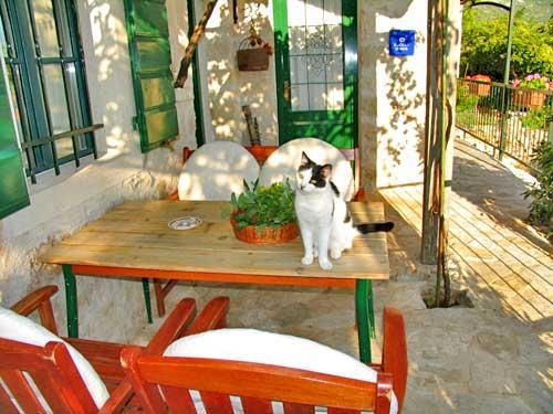 House Dobrila - 30521-K1 - Image 1 - Igrane - rentals