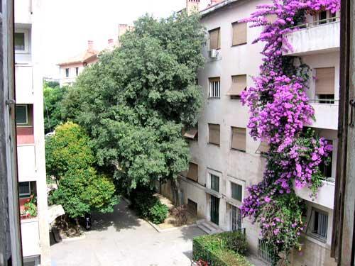 Rooms Šećer - 31211-S2 - Image 1 - Split - rentals