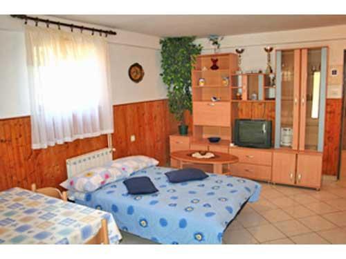 Apartments Gracijela - 70701-A1 - Image 1 - Pula - rentals