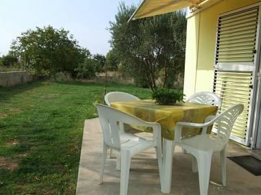 A1(4+2): terrace - 8144 A1(4+2) - Zaton (Zadar) - Zaton (Zadar) - rentals