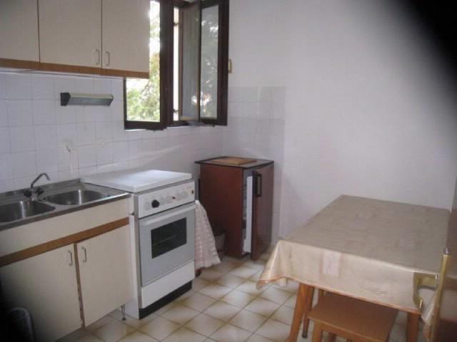 Apartments Zoran - 25531-A1 - Image 1 - Novalja - rentals