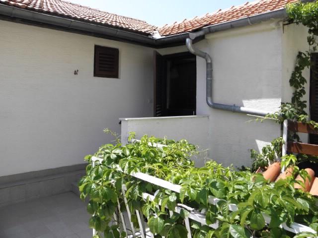 Apartments Rajko - 25921-A1 - Image 1 - Tisno - rentals
