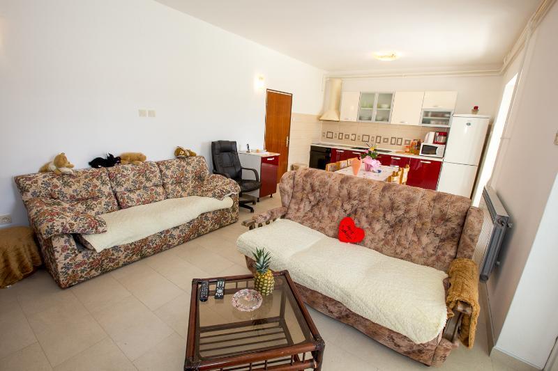 Apartments Ljubica - 65341-A1 - Image 1 - Kampor - rentals