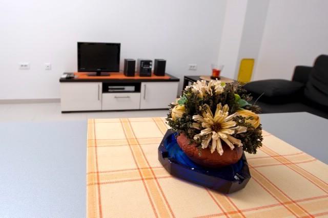 Apartments Željka - 72861-A4 - Image 1 - Rovinj - rentals