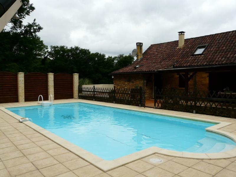 "the pool - ""Le Brugal""  house just 7km from SARLAT LA CANEDA - Sarlat-la-Canéda - rentals"