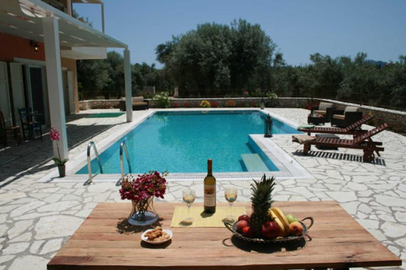 Private secluded villa with very big swimming pool, ideal for families - Image 1 - Nidri - rentals