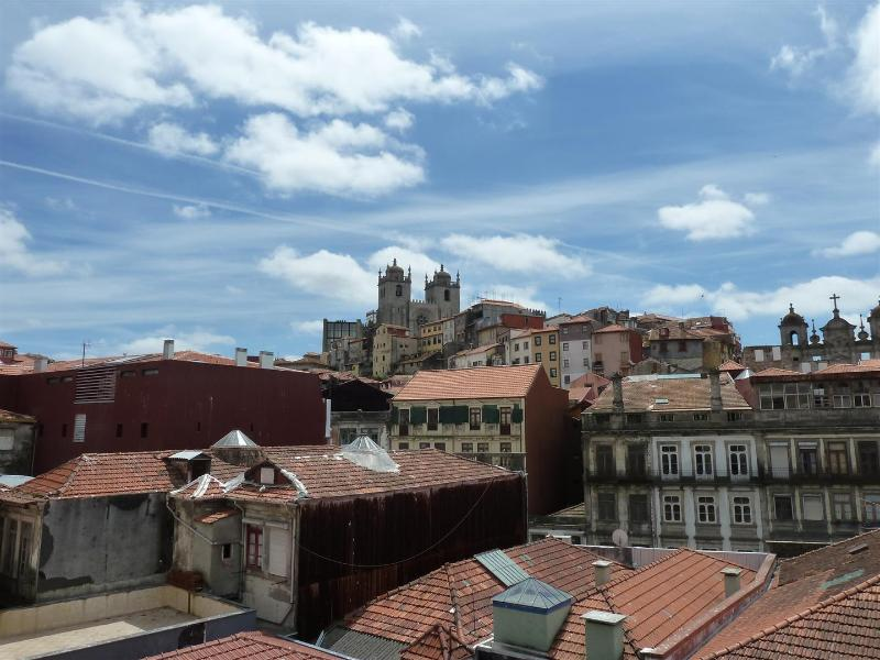 My Apartment View (View over Main Cathedral) - Duplex in the historical center of the city - Porto - rentals
