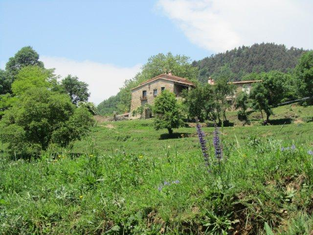 A unique home in a privileged area of ​​Catalan Pyrenees. - Image 1 - Province of Girona - rentals