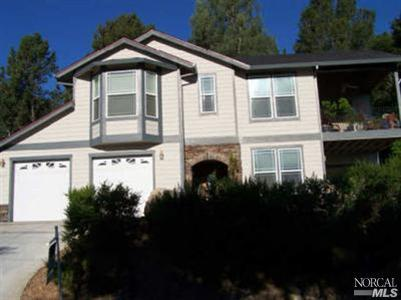 On the  slopes of Mt. Konocti - Awesome Lakeview House on Clear Lake-Pool & Lake Access! Hot-Tub!  Great Views - Kelseyville - rentals