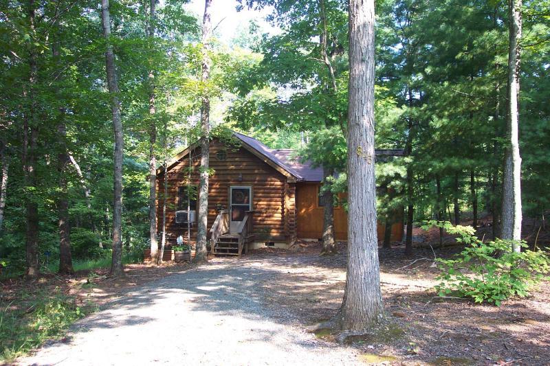 VA Cabin in the Woods - Image 1 - Woolwine - rentals