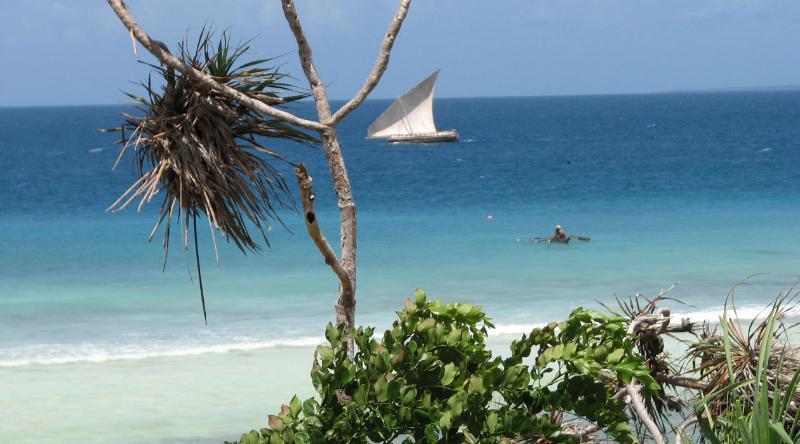 Unguja Lodge sailing - Unguja Lodge - Seaview Villa - Zanzibar - rentals