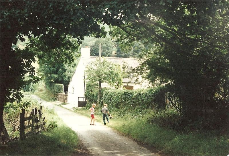 the owners children beside Caer Dyn - Traditional stone built cottage.Fully modernised. - Denbigh - rentals