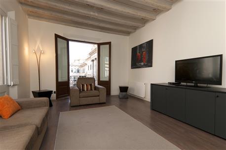 Ciutat Vella Luxury Apartment E - Image 1 - Barcelona - rentals