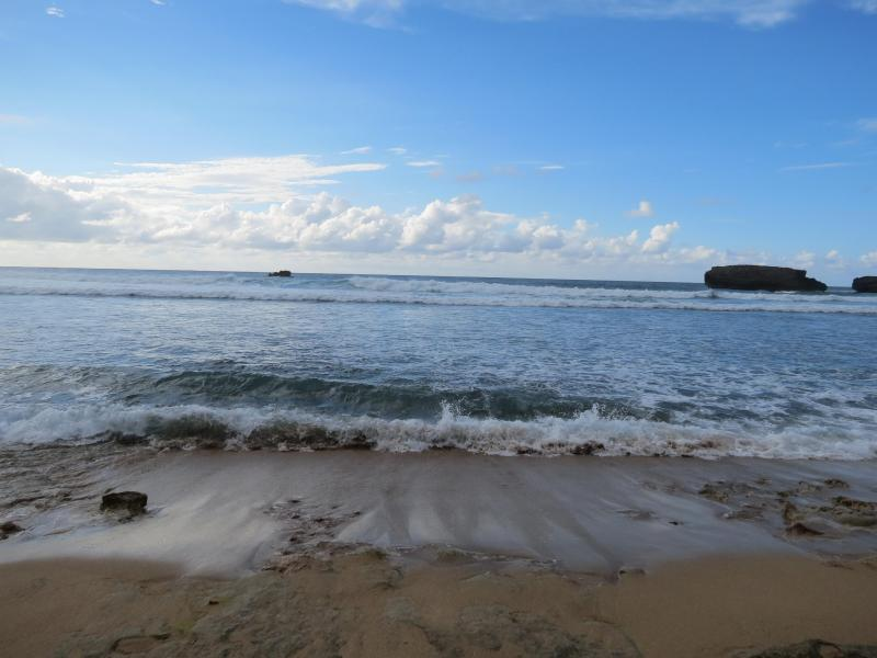 Awesome Ocean Front House! - Image 1 - Arecibo - rentals