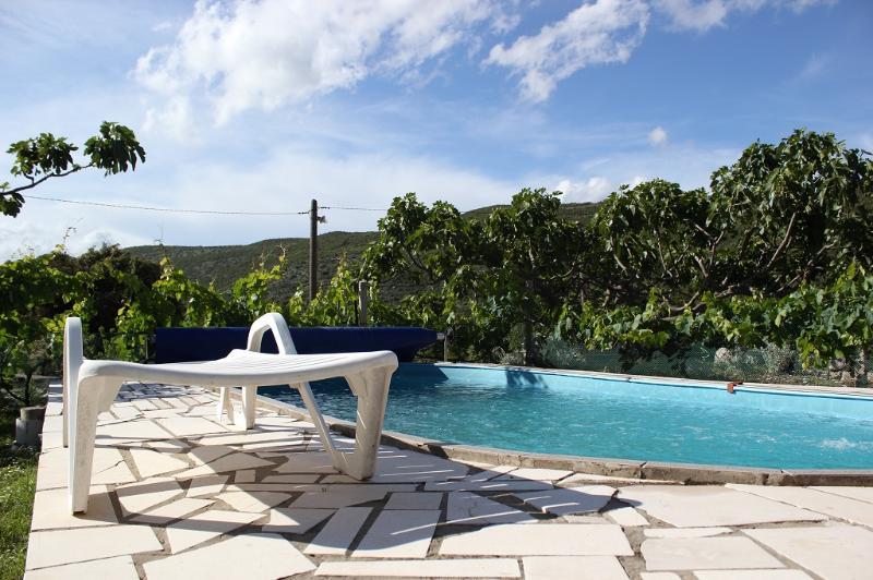 Pool House Jelica - Image 1 - Dubrovnik - rentals