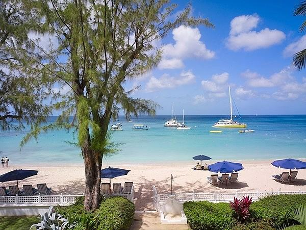 Old Trees 7 - Bella Vista at Paynes Bay, Barbados - Beachfront, Pool, Tropical Gardens - Image 1 - Paynes Bay - rentals