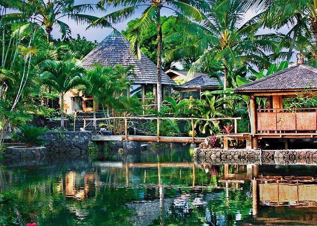 World Famous Property of Kapoho - Image 1 - Kapoho - rentals