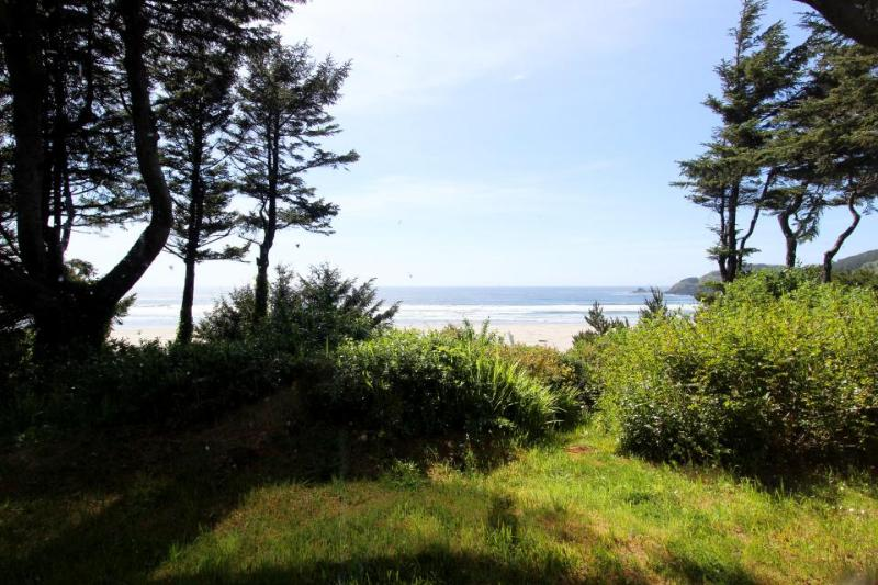 Charming oceanfront home w/Agate Beach view & shared hot tub - Image 1 - Newport - rentals