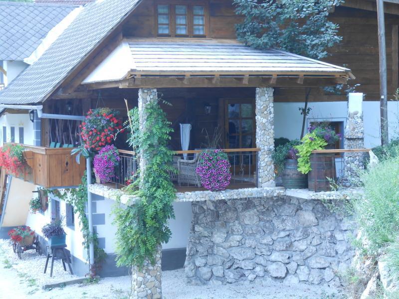 Chalet Pr Klemuc - Image 1 - Bled - rentals