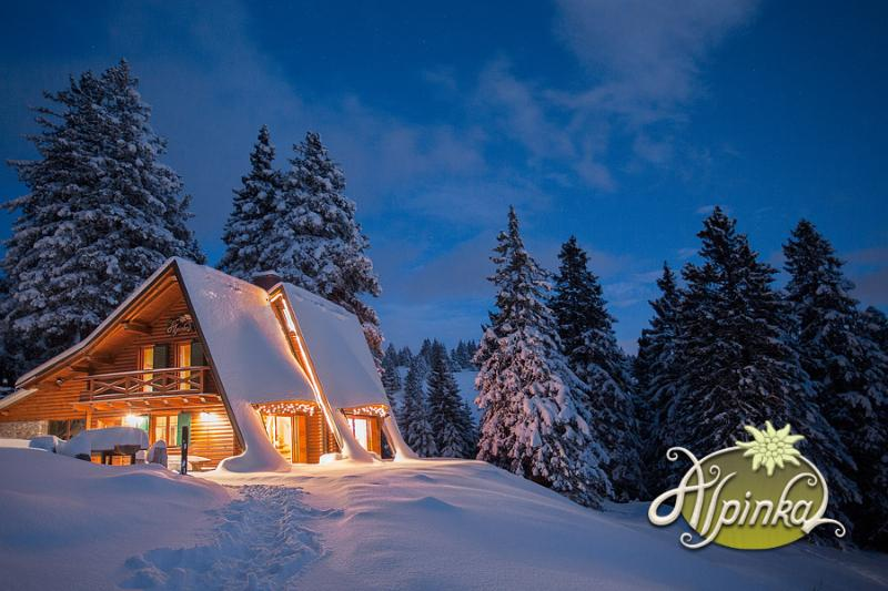 Chalet Alpinka in Winter - Chalet Alpinka - Cerklje - rentals