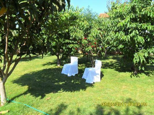 Luxury Villa Mare/Comfort Two Bedroom Apartment A1 - Image 1 - Rovinj - rentals