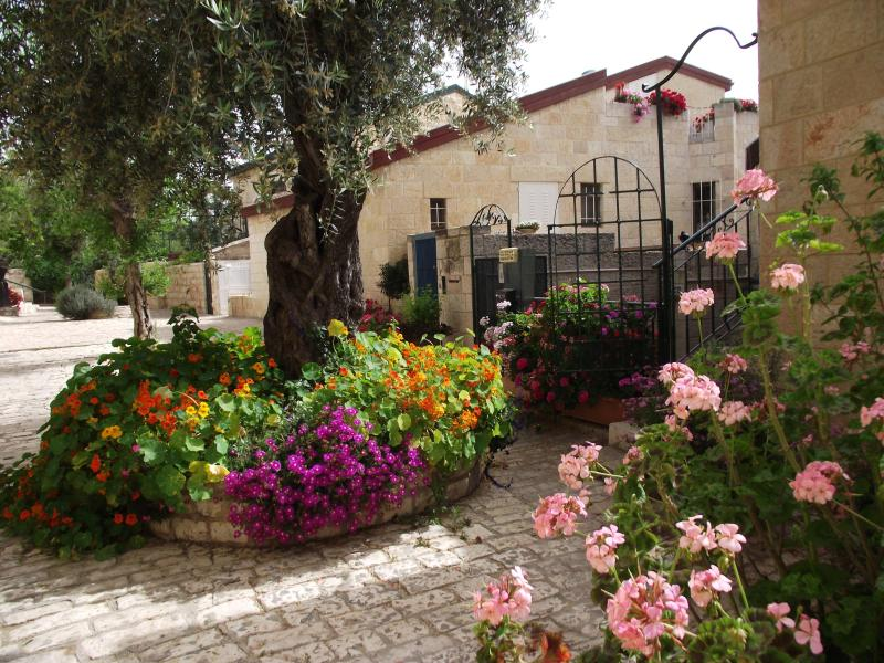 Avissar House Yemin Moshe Jerusalem - Avissar House / Under the Olive tree suite - Jerusalem - rentals