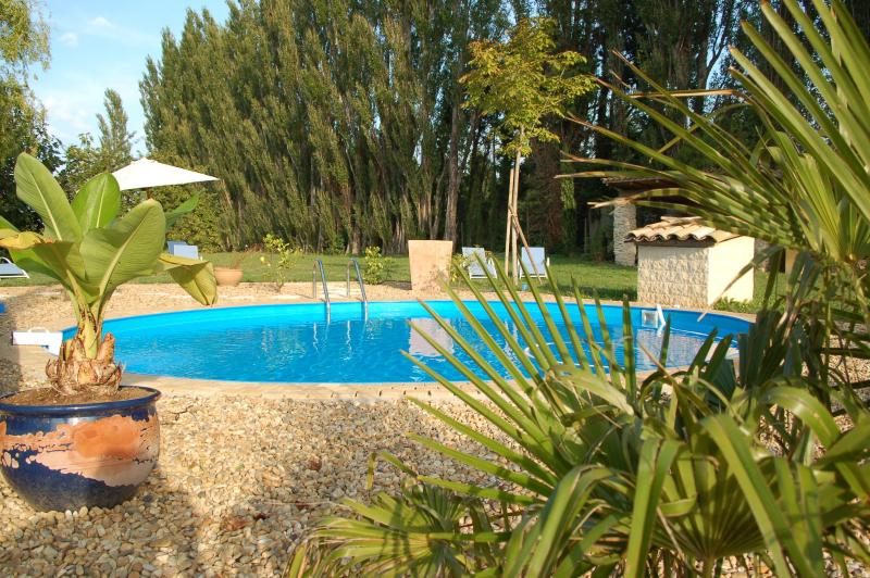 Pool - St.Remy-18th century provencal estate/Pool/AC/WIFI - Saint-Andiol - rentals