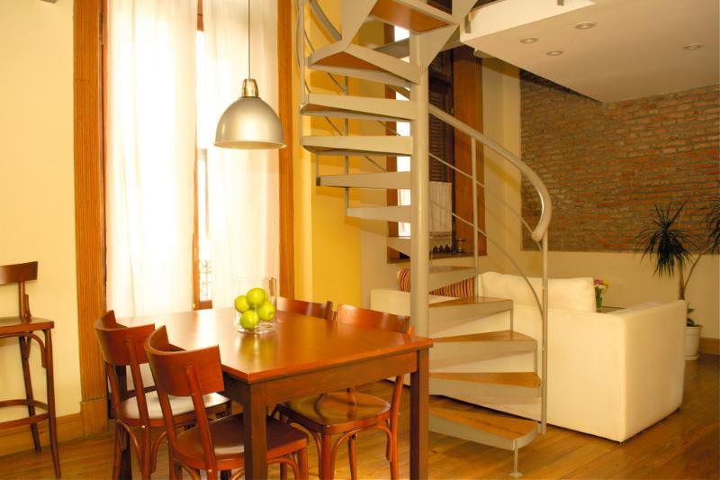 Beauty  Master Duplex  4 - San Telmo - Image 1 - Buenos Aires - rentals