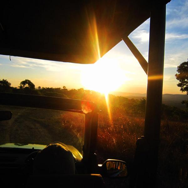 Sunset from the Arendsig Private Game Vehicle - ArendSig Luxury Safari Villa - Mabula Private Game Reserve - rentals