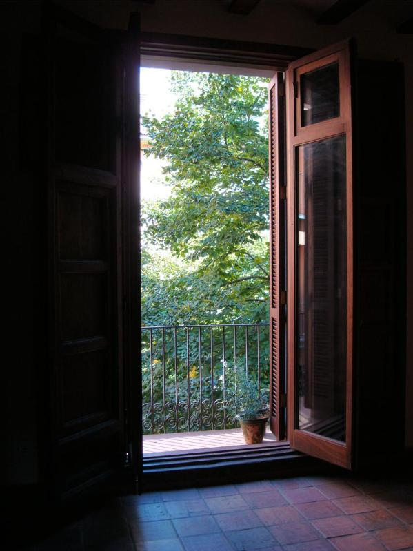 Los Tilos (Lime trees) views - Exquisite Flat, Center of Valencia - Peralta - rentals