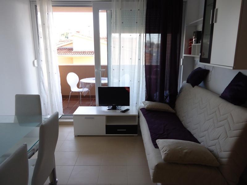 Apartment Mislav - Image 1 - Podstrana - rentals