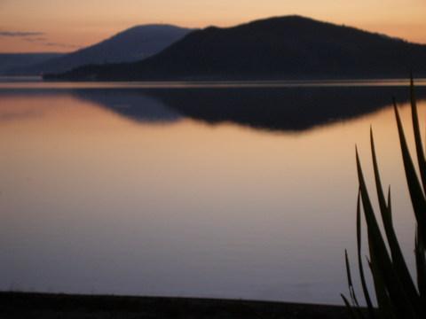 Mokoia Island - Lake Edge Rotorua New Zealand - Rotorua - rentals
