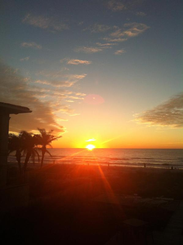 Charming Cottage by the Sea - Image 1 - Indian Rocks Beach - rentals