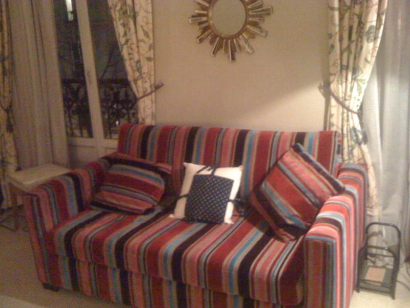 fold out sofa in living room - 1-bedroom in central Paris - Paris - rentals