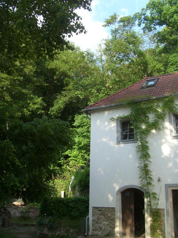 house for rent - house near the Zoo - Prague - rentals