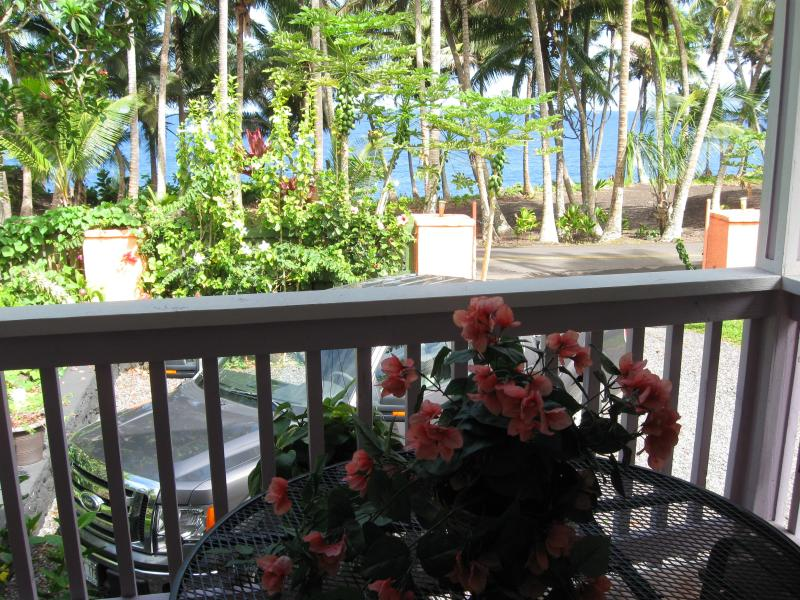 Dolphin Cottage @  Kehena Beach, Hawaii - Image 1 - Pahoa - rentals