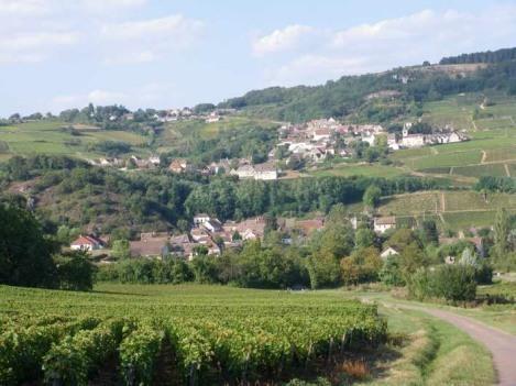 sampigny et ses vignes - Maison pour 8 personnes  près de Beaune BOURGOGNE - Tournus - rentals