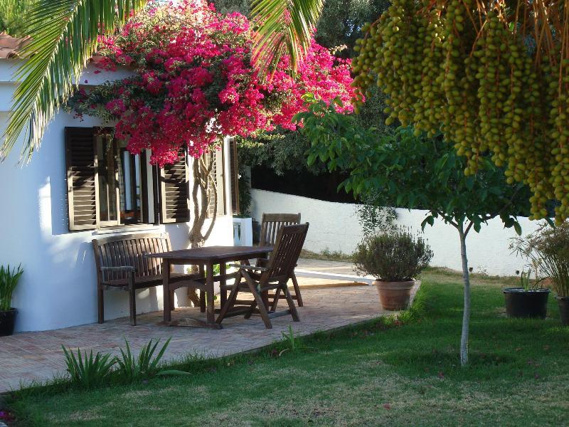 Lovely holiday home in Algarve - Carvoeiro - Image 1 - Carvoeiro - rentals