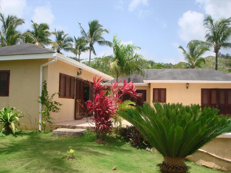 (Villa Monica) - Image 1 - Las Terrenas - rentals